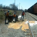 First Environmental Cleanup